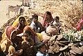 Rajasthan, India (27637376873).jpg