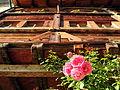 Rapperswil - Hintergasse 2012-09-23 16-20-17 (P7000).JPG