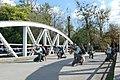 Reconstituirea luptei de la Podul Jiului - Asociația Tradiția Militară (2).jpg