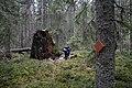 Retkeilijä Hyypiökalliolla, Liesjärven kansallispuisto, Tammela, 15.11.2014..JPG