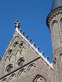 Ridderzaal in Den Haag. Kruisbloem en hogels.JPG