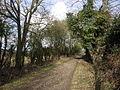 Ridgeway near Watlington - geograph.org.uk - 123132.jpg