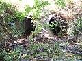 Riedgraben Auslass unter K 13.jpg