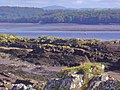 River Dee near Nun Mill Bay - geograph.org.uk - 1478773.jpg