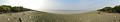River Ichamati - Sundarban Biodiversity and Interpretation Area - Taki - North 24 Parganas 2015-01-13 4709-4719.tif