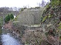 River Irwell at The Glen - geograph.org.uk - 674174.jpg