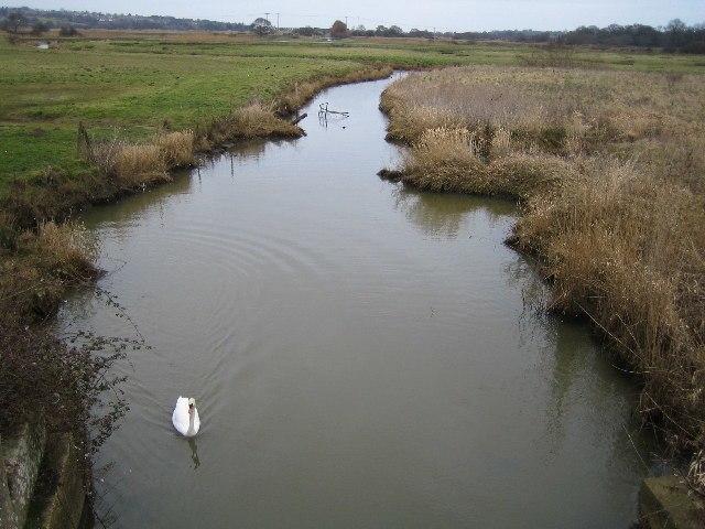 River Yar - geograph.org.uk - 120713
