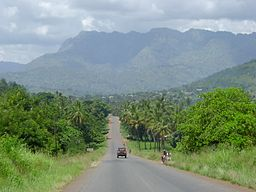 Road to Korogwe, with the Usambara Mountains. Tanzania.jpg