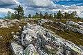Rocky landscape on Kivitunturi, Savukoski, Lapland, Finland, 2021 June - 3.jpg