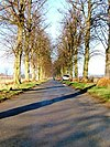 Roman Road, Over Dinsdale - geograph.org.uk - 114362.jpg