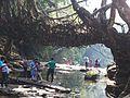 Root-Bridge,Mawllynong.jpg
