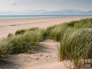 Rossbeigh - Rossbeigh Beach