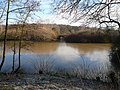 Rufford Park Lake - geograph.org.uk - 321346.jpg