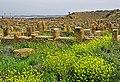 Ruinas Timgad 4.jpg