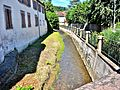 Ruisseau, le Rimbach. (2).jpg