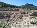 Runes al fondo del Pantà d'Arenós - 41.jpeg