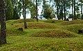Runnevåls Gravfält (6).jpg