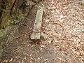 Rustic bench under GWB jeh.jpg