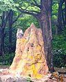 SRI JAYAVEERA ANJANEYAR TEMPLE, NH7, THOPPUR - panoramio (6).jpg