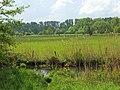 Saarn-Mendener Ruhraue Schutzgraben.jpg