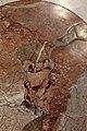 Sala regia, madonna col bambino nei marmi del pavimento.jpg