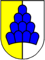 Stema de Salenstein