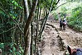 Samaná Province, Dominican Republic - panoramio (116).jpg