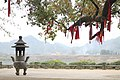 Scenic tree temple in China.jpg