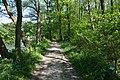 Schleswig-Holstein, Nordhastedt, Landschaftsschutzgebiet Mühlenteich NIK 2452.jpg
