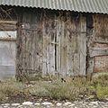 Schuur, schuurdeur in slechte staat - Weijerswold - 20361648 - RCE.jpg