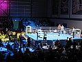 Scottish Elite Boxing Finals 2015 (geograph 4407113).jpg