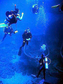 Four divers, equipped with oxygen cylinders, at the see bottom.