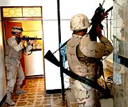 Search for insurgents