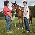Secondary PTSD treated at STAR Healing With Horses 140617-A-ZU930-003.jpg