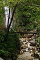 Sentiero delle acque bianche - Senerchia.jpg
