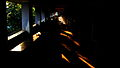 Shadows and Light 1 (15385171513).jpg