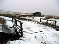 Shed by the Dippal Burn - after the snow - geograph.org.uk - 735803.jpg