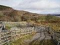Sheep pens - geograph.org.uk - 161504.jpg