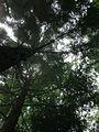 Shei-Pa National Park WANG.GUAN-REN . 001.jpg