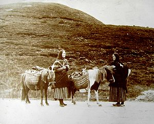 Shetland pony - Two women of the Shetland Isles with ponies: photograph taken about 1900