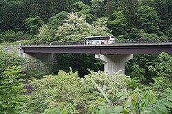 Shin-en bridge1.JPG