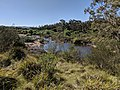 Shoalhaven at Warri, New South Wales.jpg