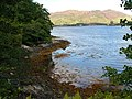 Shoreline on Loch Duich - geograph.org.uk - 546258.jpg