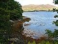 Shoreline on Loch Duich - geograph.org.uk - 546258.jpg