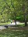 Sights on the Riverway in Boston, MA. 12.jpg