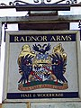 Sign for the Radnor Arms, Nunton - geograph.org.uk - 688558.jpg