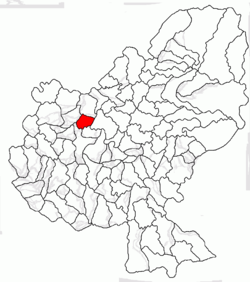 Location of Şincai