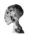Siptah mummy head.png