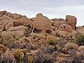 Skull Rock (14397717974).jpg