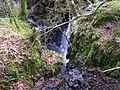 Sloughan Glen - geograph.org.uk - 1176779.jpg